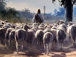 ShepherdFlockGod